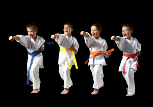Kids Karate In Raleigh