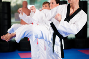 Karate Classes In Raleigh