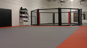 martial arts classes in Raleigh